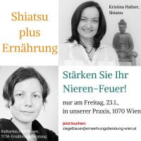 Shiatsu plus Ernährungsberatung für Ihr Nieren-Feuer, am 23.1. in unserer Praxis in Wien