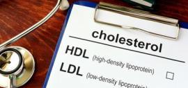 """Foto eines Zettels mit """"cholesterol"""" und HDL und LDL zum Ankreuzen"""