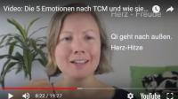 Screenshot vom Video mit Katharina zu den 5 Emotionen