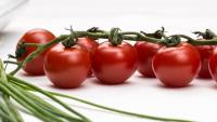 Tomaten kühlen uns im Sommer