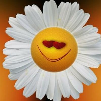 Eine lächelnde Margarite