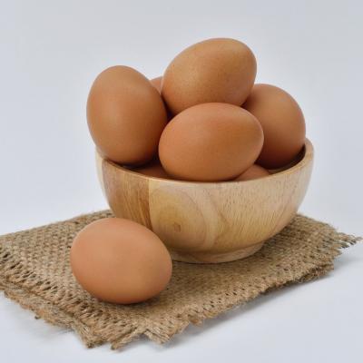 Eier (Foto von Pixabay)