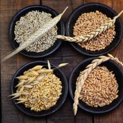 Getreidekörner in Schüsseln