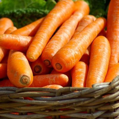Foto von frischen Karotten in einem Korb (von pixabay)