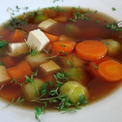 Misosuppe mit Karotten, Tofu, Kohlsprossen, Kresse (Foto privat)