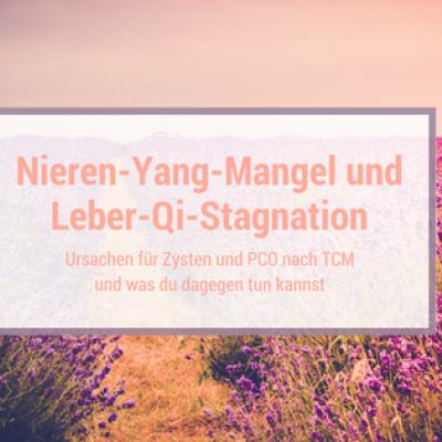Nieren-Yang-Mangel ist die Ursache nach TCM für Zysten